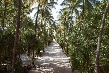 Maayafushi Tourist Resort
